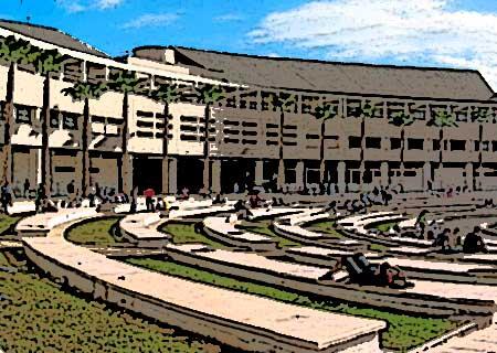 Academia universitaria. Edificio universitario